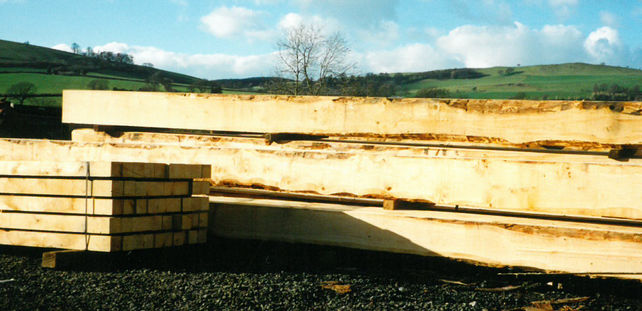 natural oak for the construction of our fine timber buildings