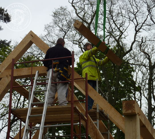 Trusses and purlins